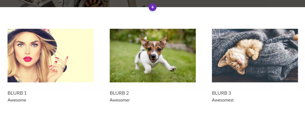 Divi Blurb Modules With The Same Size Images Using CSS
