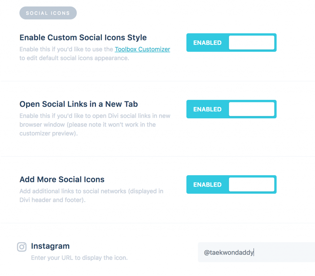Add More Social Icons with Divi Toolbox